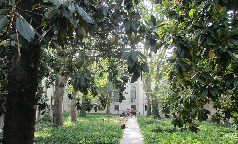 Palazzo Badoer Garden (D. Saitta)